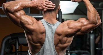 How does Testosterone Decanoate work on your muscles?