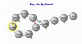 Facts about Custom Peptide Synthesis You Should Know About