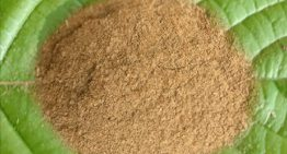 Quality and the Essence of the Red Vein Borneo Kratom