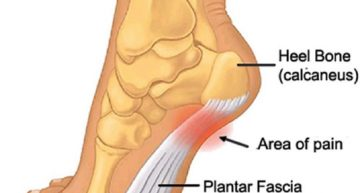 Issues With Feet Handled By Podiatrists